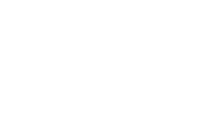 Digital, Data and Technology